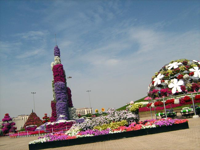 Цветы в пустыне: Miracle Garden in Dubai