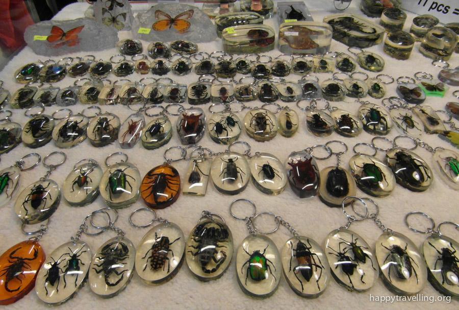 насекомые бангкок