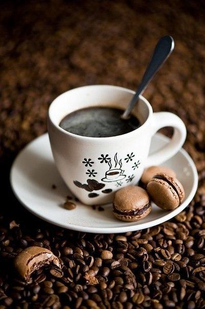 Чайник или кипятильник: что брать с собой