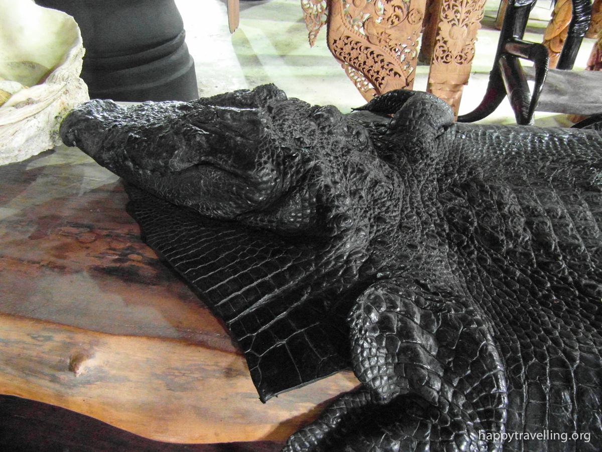 кожа крокодила
