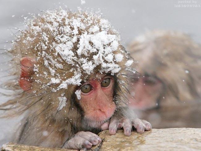Отдыхающим осенью и зимой посвящается: как вернуться и не заболеть