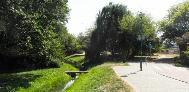 SAM_9952