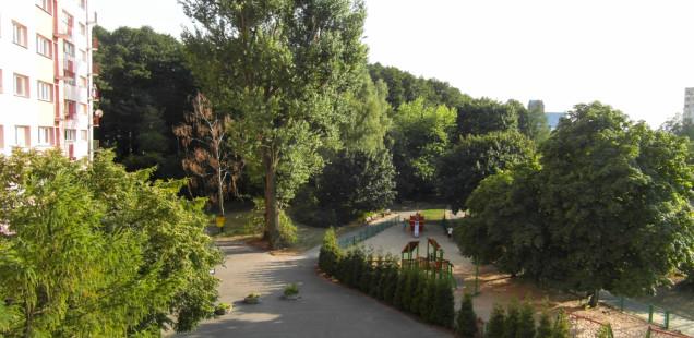 вид из окна парк Ольшина