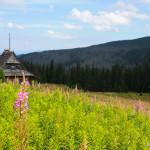 Закопане: вершина Каспровы верх, или Почему я плакала