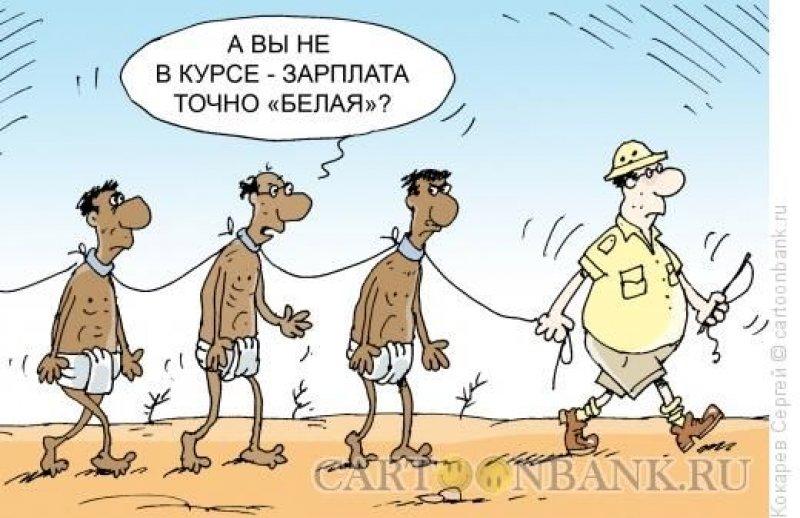 belaya-zarplata_800x518