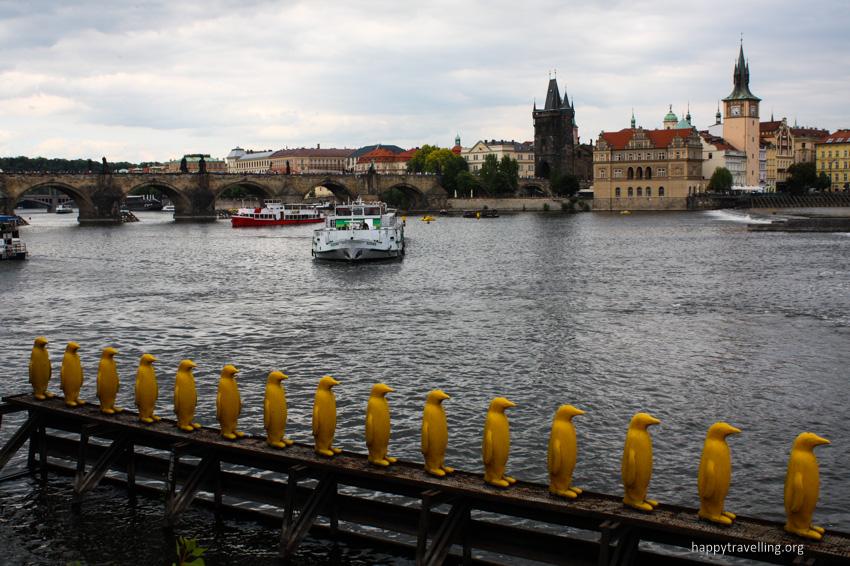 пингвины в Праге