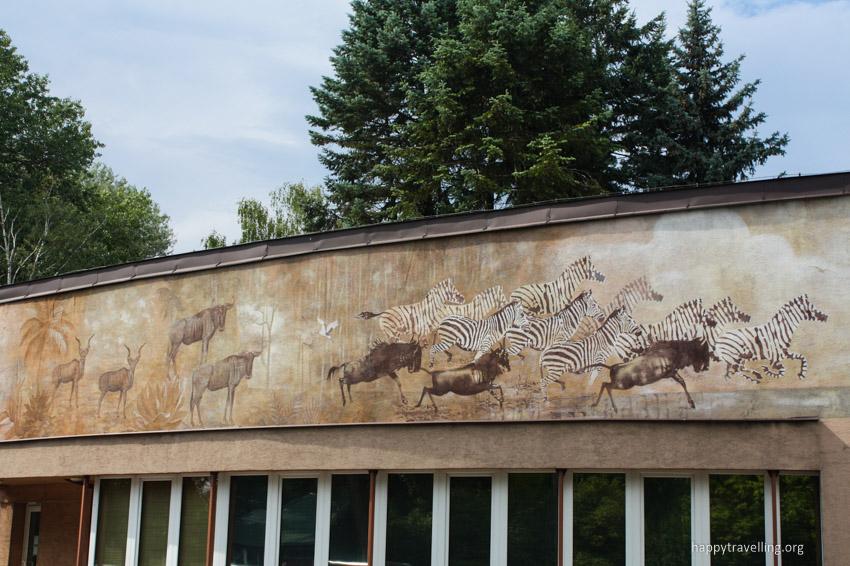 зоопарк зебры и другие животные