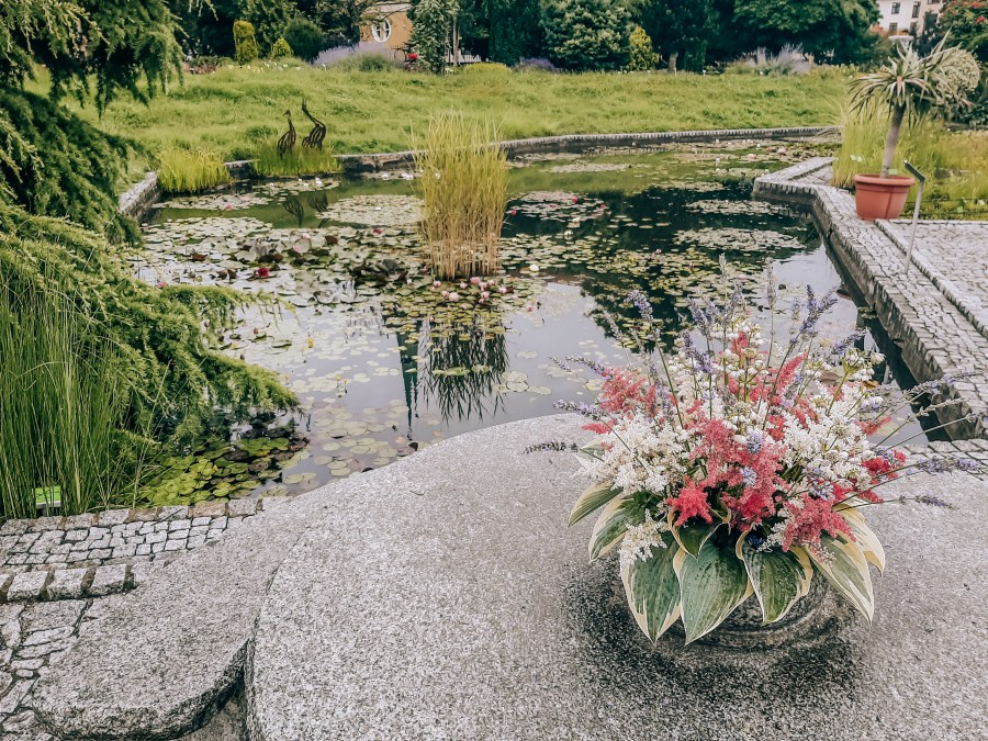 японский сад Вроцлав