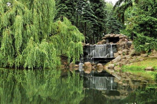 парк скарышевски