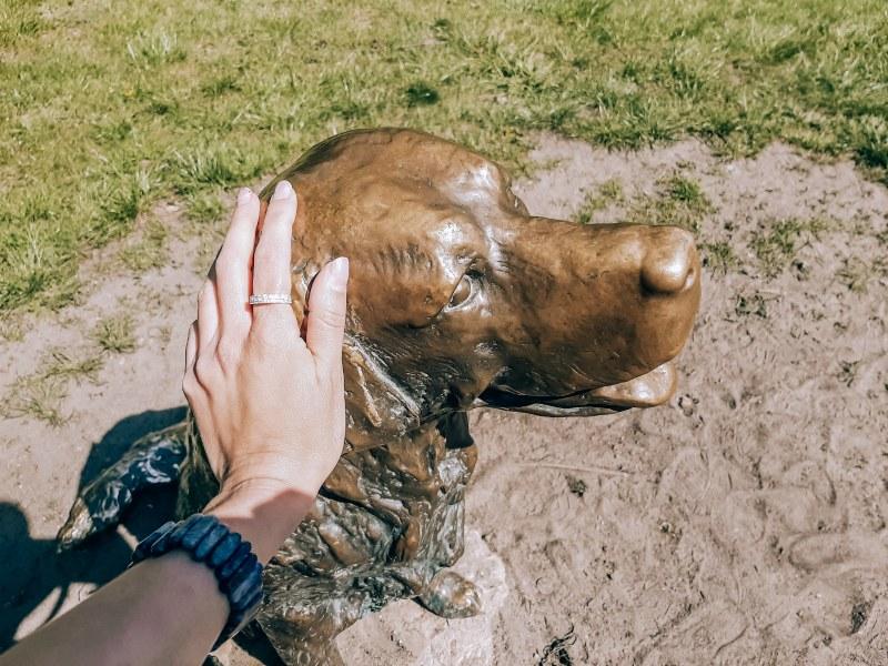 памятник счастливому псу
